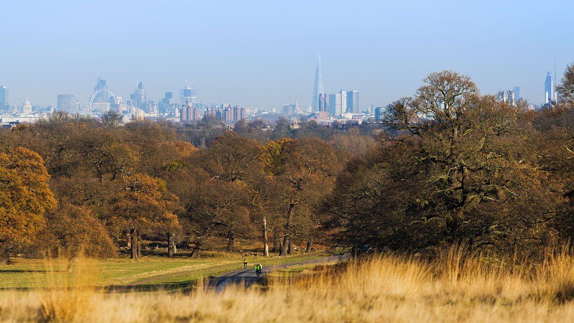 Richmond-park-london-view