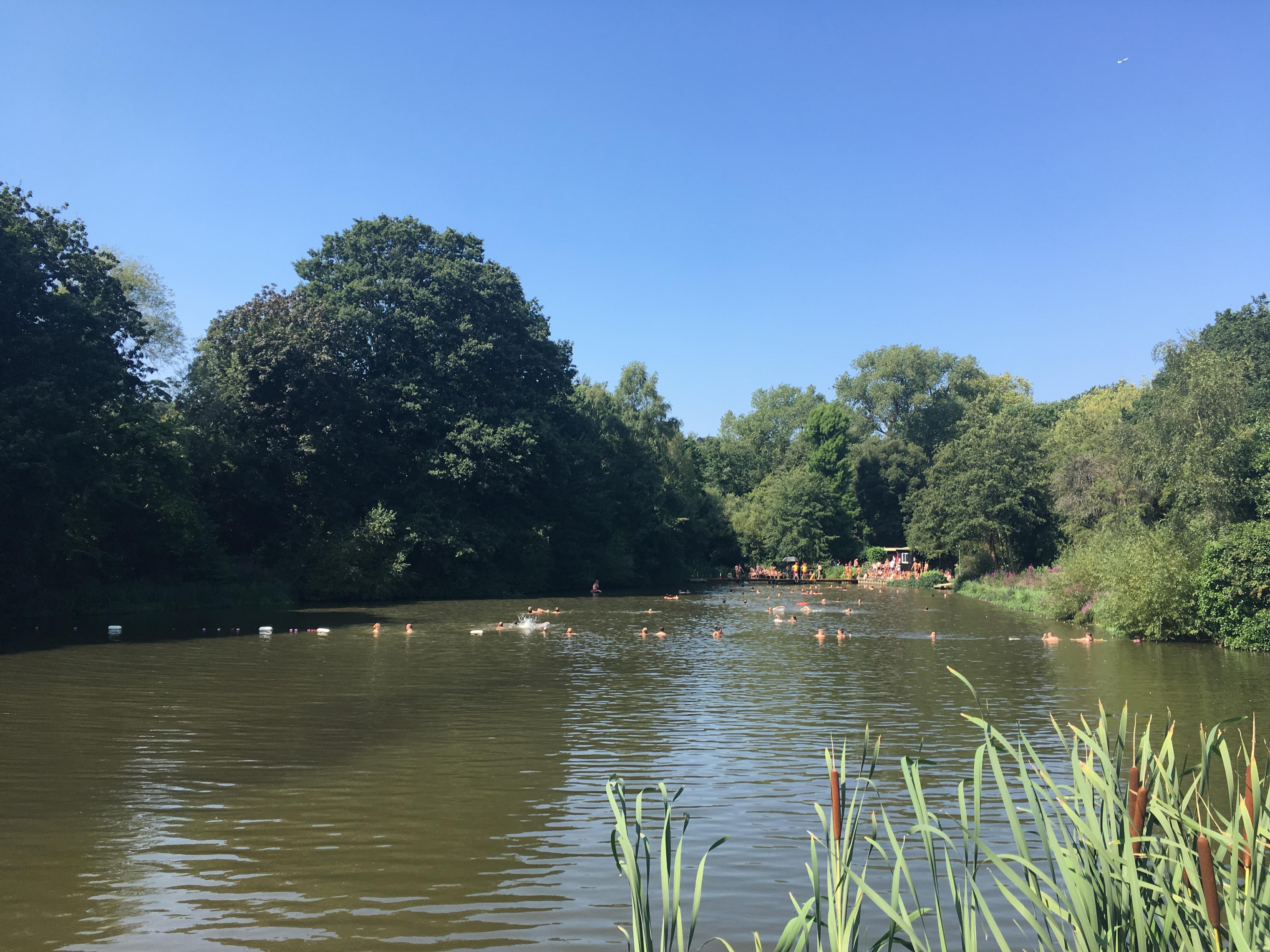 Hampstead-Heath-Pond