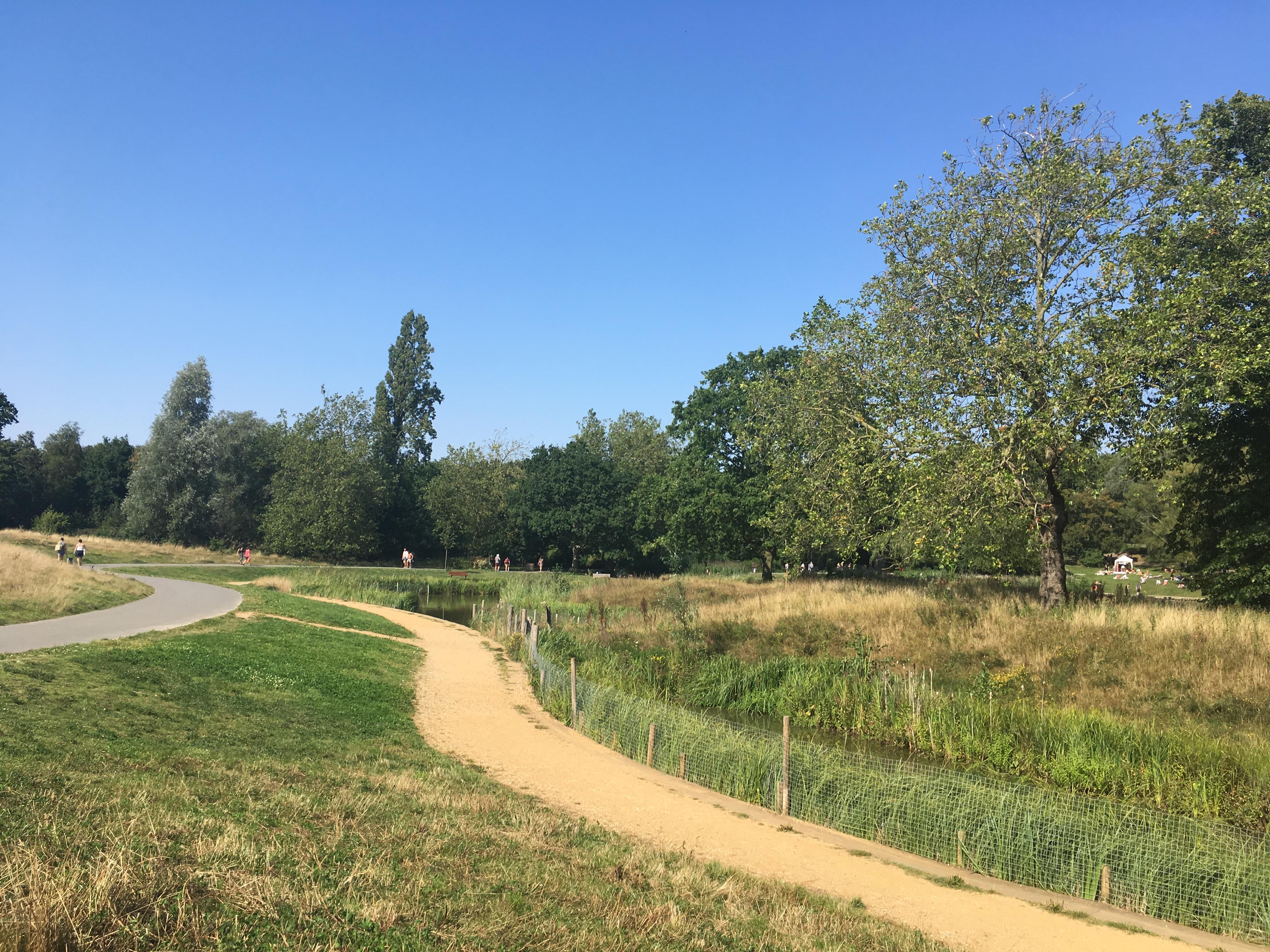 Path-Hampstead-Heath