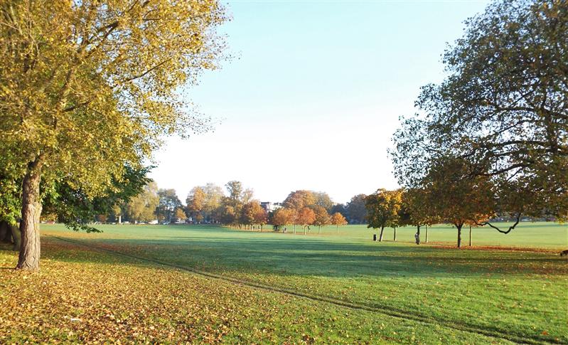 Peckham Rye Park